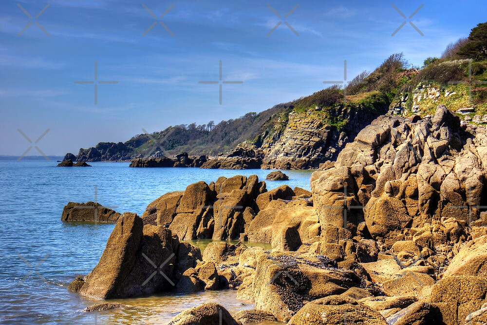 Rugged Coast by Tom Gomez