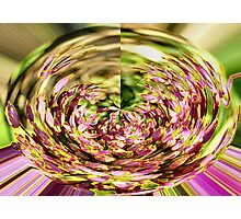 FLOWER MAGIC ART.CARDS AND CANVASES Photographic Print