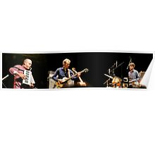 Medeski,Martin and Wood--Panorama Poster