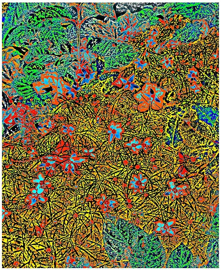 Florals #11 by Mark Ross