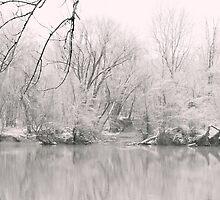 A Whisper of Snow by MichelleAyn