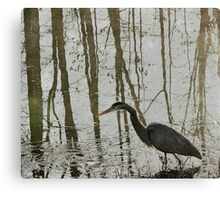 Reflection on the Hunt Canvas Print