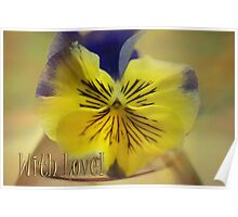 Beautiful Pansy & With Love text Poster