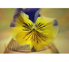 Beautiful Pansy & With Love text Photographic Print
