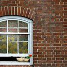 Dutch Window by Maria Dryfhout