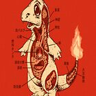 Japanese Anatomy Of A Pokemon Charmander by cupcakewaffles