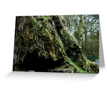 Mossy cave Greeting Card