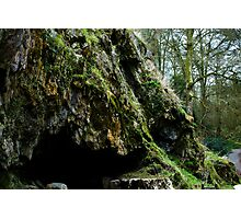 Mossy cave Photographic Print