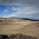 Marbled Desertview,Black Rock Desert,Gerlach,Nevada USA by Anthony & Nancy  Leake