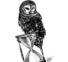 Owl of Time Photographic Print
