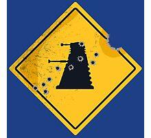 Dalek Crossing Photographic Print