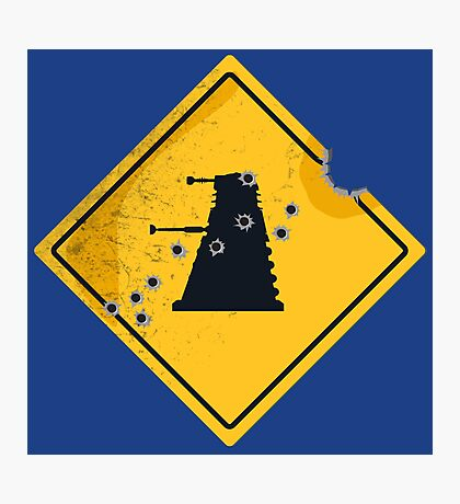 Dalek Crossing Photographic Print
