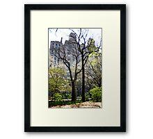 From Central Park 2009 Framed Print