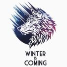 Winter Is Coming by kuzzie