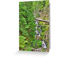 no name creek Greeting Card
