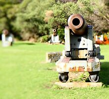 Cannons by sherele