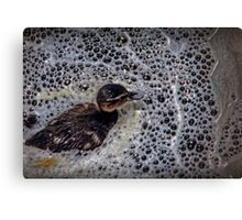 A baby duck swimming in bubbles Canvas Print