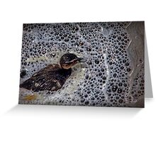 A baby duck swimming in bubbles Greeting Card