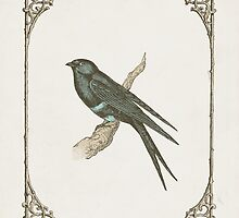 A Victorian Bird by Zeke Tucker