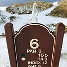 number 6 hole marker sign with glass slipper by morrbyte