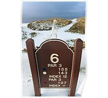 number 6 hole marker sign with glass slipper Poster