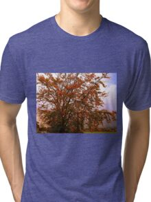 Tha Lampost and the Tree Tri-blend T-Shirt
