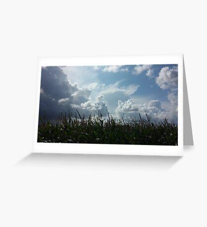 Danish landscape Greeting Card