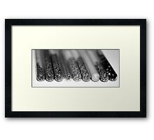 Spice up your life (BW) Framed Print