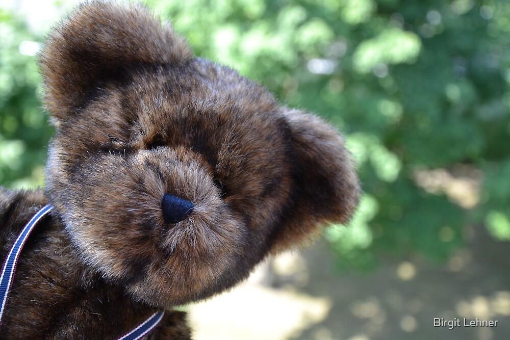 Peek-A-Bear by BirgitHM