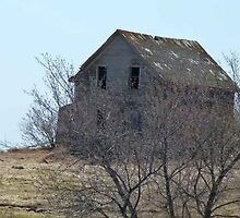 House on a Hill by MaeBelle