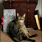 Does this pose make me look fat??? © by Dawn M. Becker