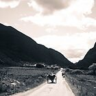 Towards the Gap of Dunloe by Pauline Mason