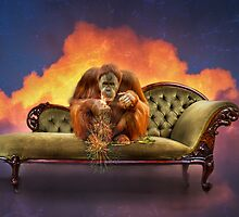 The New Cre~ape~tive Suite in the cloud? by Julie Begg