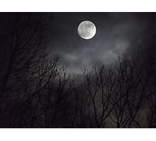 Moonlight 2 Photographic Print