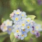 forget me not by Kelly Letky