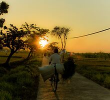 Go Home From The Farm at the evening by PutroGraph