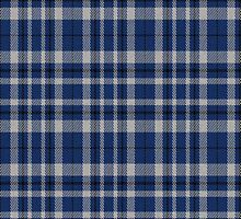 02357 Hennepin County, Minnesota E-fficial Fashion Tartan Fabric Print Iphone Case by Detnecs2013