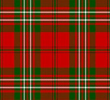 10012 Scott Clan/Family Tartan Fabric Print Ipad Case by Detnecs2013