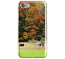 Autumn Foliage Cows In Field iPhone Case/Skin
