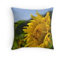 Bee Sunny Throw Pillow