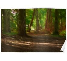 Enchanted Woods Poster