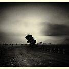 A morning at kollegala by Joseph D'Mello