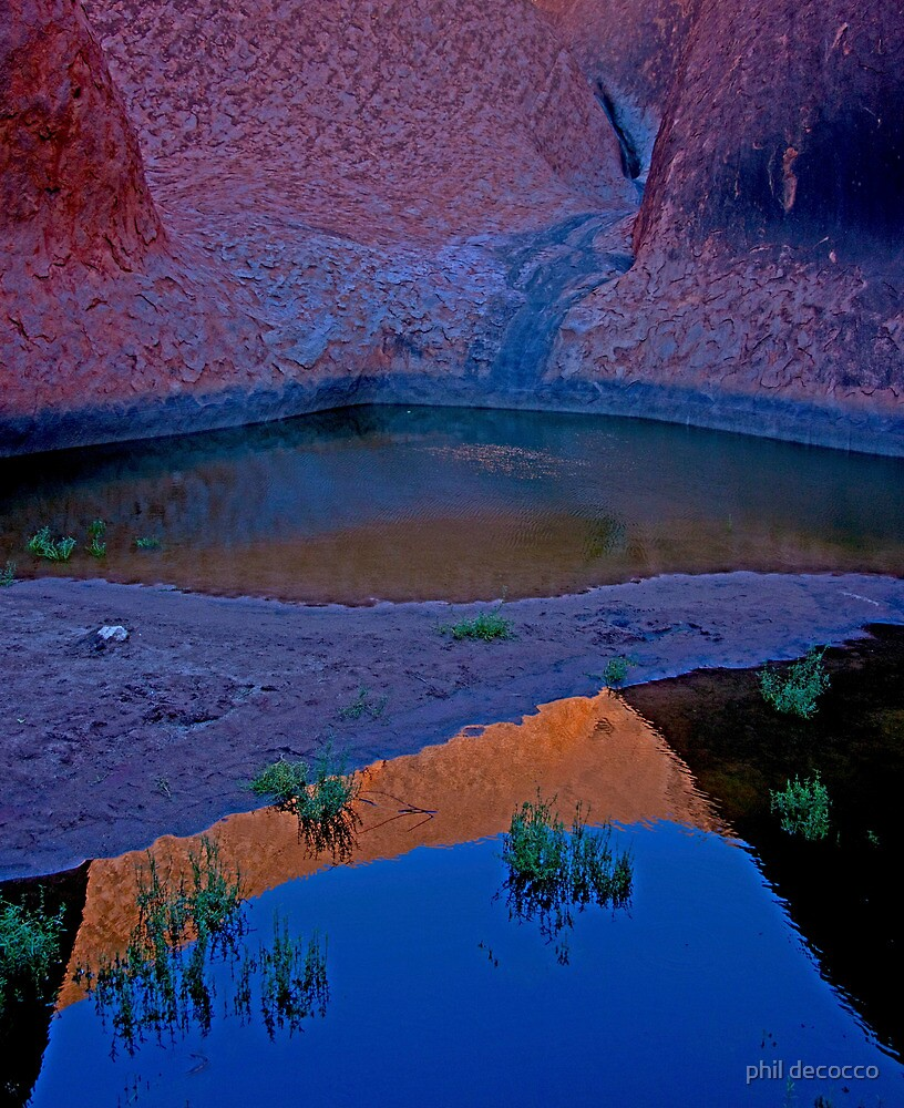 Reflections In The Billabong by phil decocco