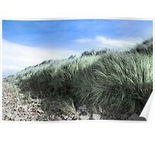 Beal rocks and sand dunes Poster