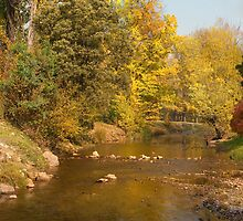 Riverside in Autumn by DavidsArt
