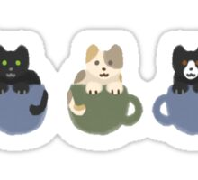 Cats in Cups Sticker
