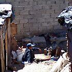 Backyard dwellers by Karen01