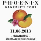 Phoenix: Bankrupt! Tour (11.06.2013 - Hamburg) #2 by Teji