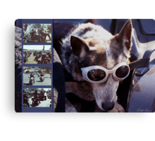 Just call me Dog Canvas Print