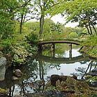 Japanese Water Garden by DarthIndy